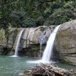 ドヤ顔の鳥がお出迎え!ジャングルに入った探検家気分を味わえる「嶺脚瀑布」【平渓線】